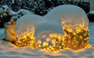 LED Weihnachtsbeleuchtung derLESO