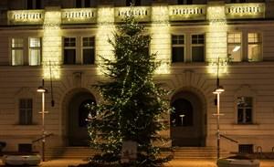 Ein Lichtervorhang ist eine glanzvolle Weihnachtsbeleuchtung für alle Gebäude