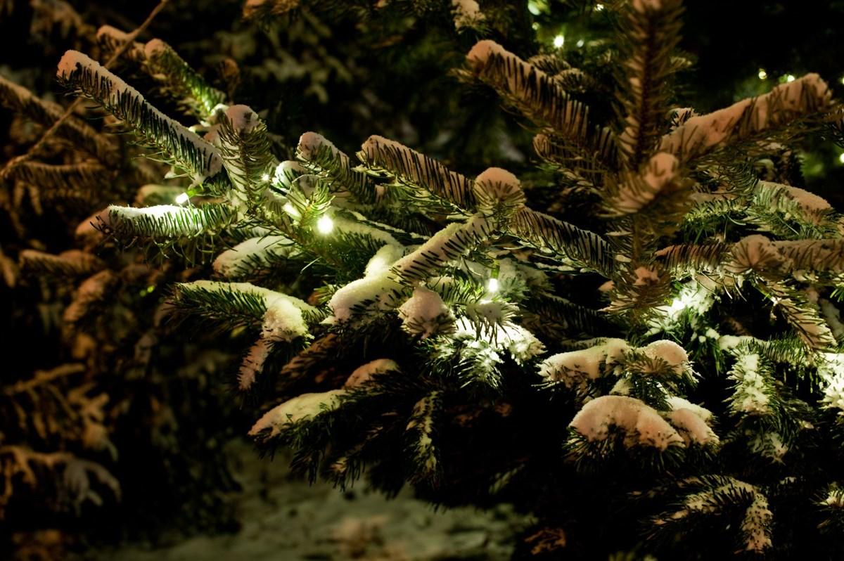 Ein Weihnachtsmarkt mit Lichterketten - Immer stimmungsvoll