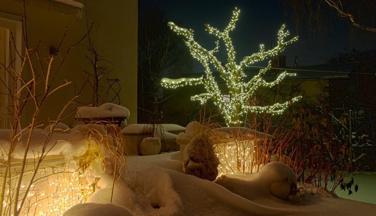 Weihnachtsbeleuchtung mit Lichterkette auf Baum