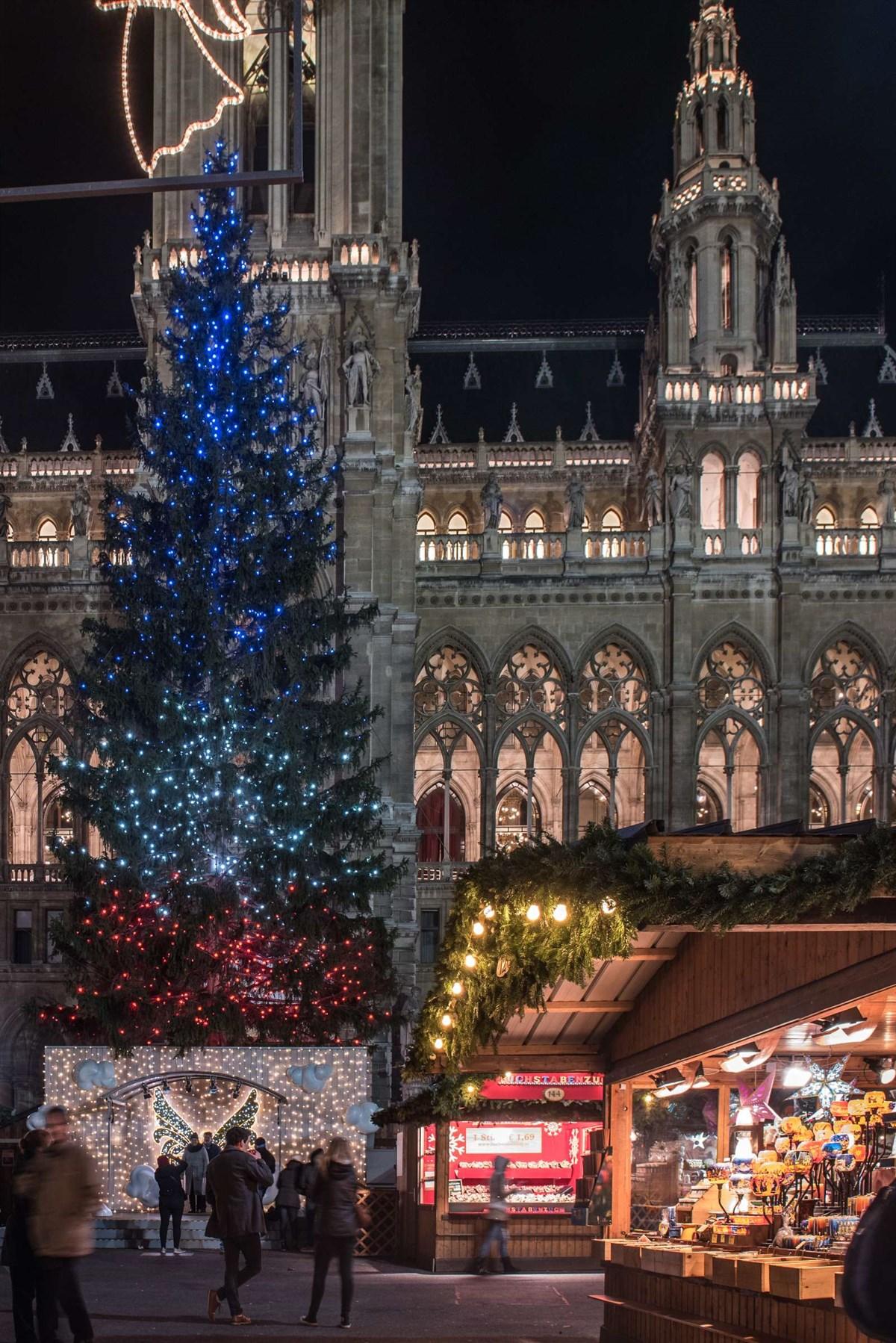 Der Weihnachtsbaum am Rathausplatz - Jedes Jahr ein Erlebnis